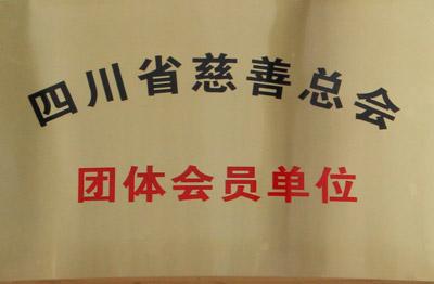 四川省慈善总会 团体